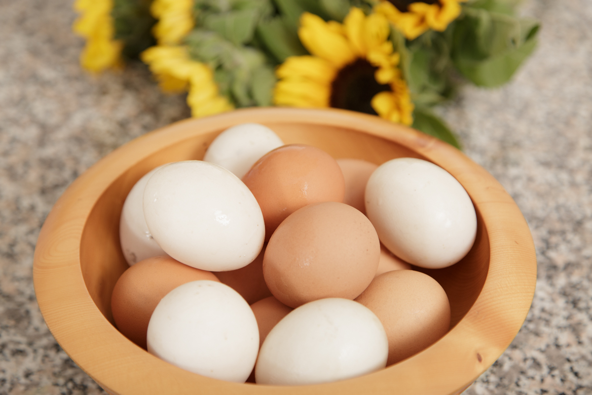 Eggs for LCHF diet